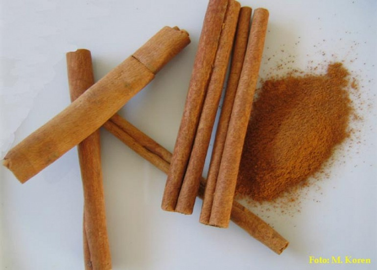 Cimet (Cinnamomi cortex)